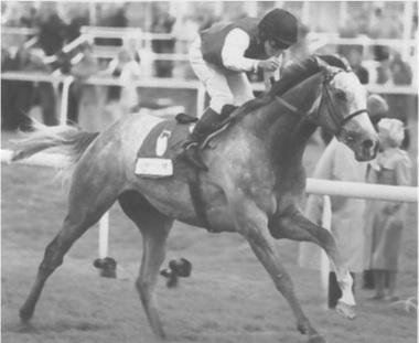 Silver Pat 1997